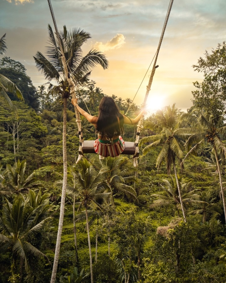 Swings in Ubud