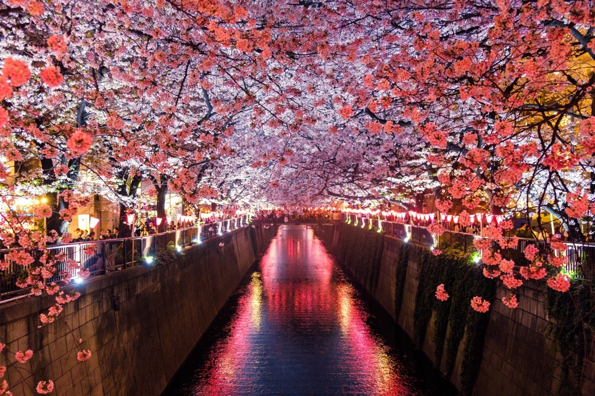 cultural attractions of Japan